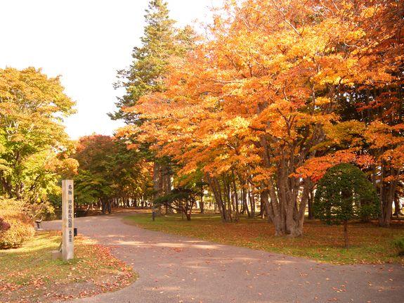 函館紅葉スポット香雪園の見ごろベストシーズン